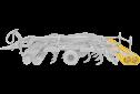TopDown 300-900 - 11t