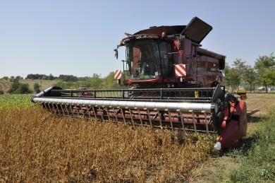Как да увеличим потенциала на реколтата от соя чрез по-ранна сеитба?